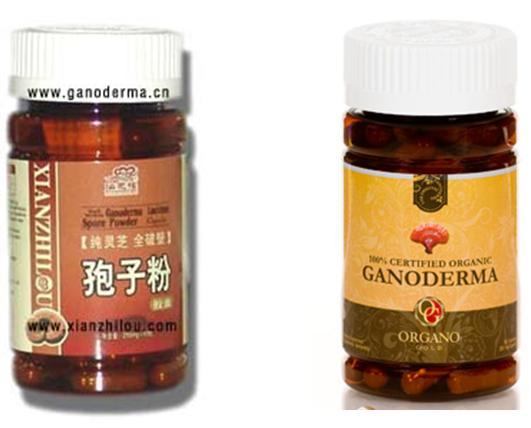 Ganoderma | Organo Gold