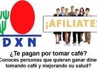 Café con ganoderma de DXN